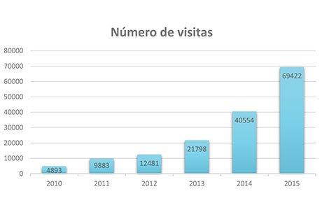 AEDED_Estadisticas_web_2015_grafico